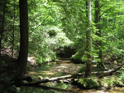 Creek near Florence in Northwest Alabama