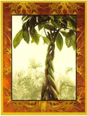 40x30 FICUS TREE Tropical Jungle Tapestry Wall Hanging $260