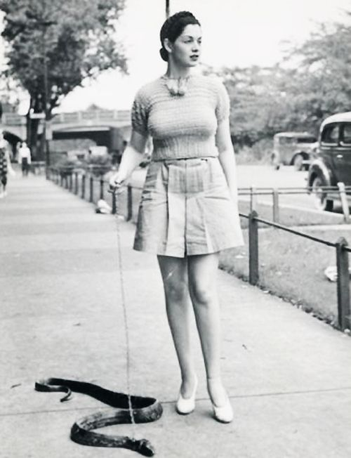 Burlesque dancer Zorita walks her pet snake, 1937