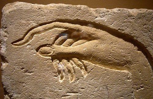 Anunnaki, Nephilim: 'goden' en gentechnologie