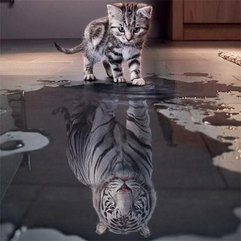 Confident Cat Is Tiger Abstract Art - OLOEE