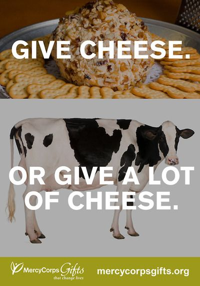 Maybe a cheese log can change someone's life. But in some of the world's toughest places, a milking cow can do a whole lot more for a family in need.  Your presents can make a difference! Shop over 50 Mercy Corps Gifts at http://gifts.mercycorps.org/