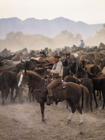 "John Wayne Filming ""The Undefeated"" Premium Photographic Print by John Dominis at Art.co.uk"