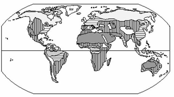Earth's Biomes coloring page   homeschool   Pinterest ...