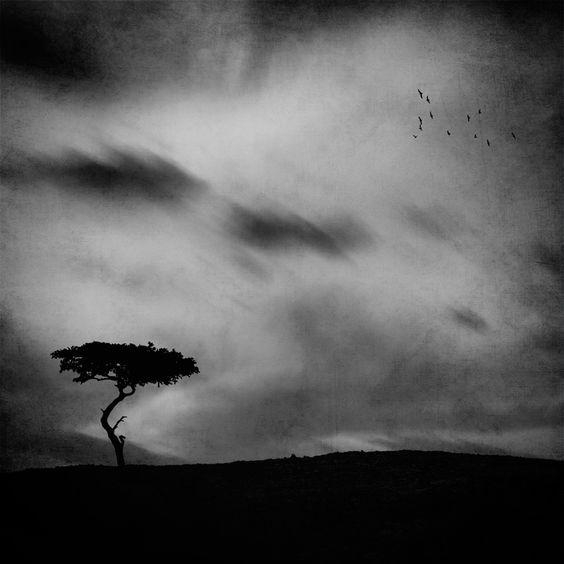 Home Again ... by Ahmed M. Abdulazim, via 500px