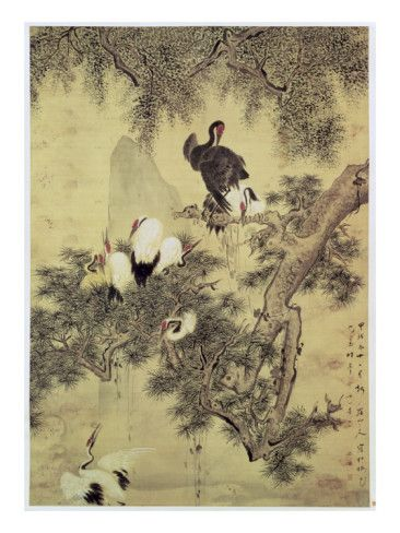 Eight Red-Crested Herons in a Pine Tree, 1754 Giclee Print by Hua Yan at AllPosters.com