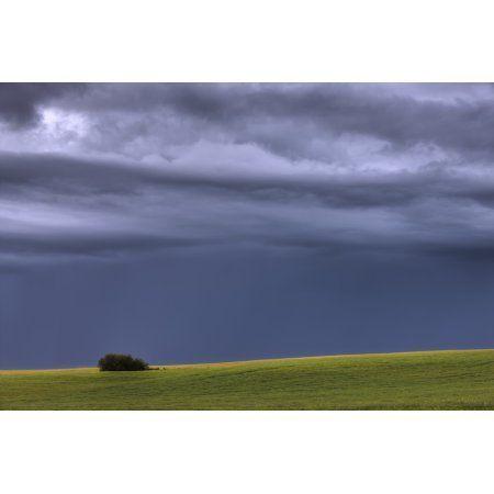 Storm Clouds Over Pasture On Summer Evening Central Alberta Canvas Art - Dan Jurak Design Pics (34 x 22)