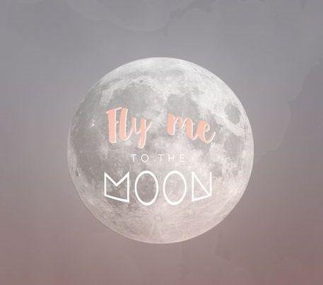 Emmène-moi jusqu'à la Lune: