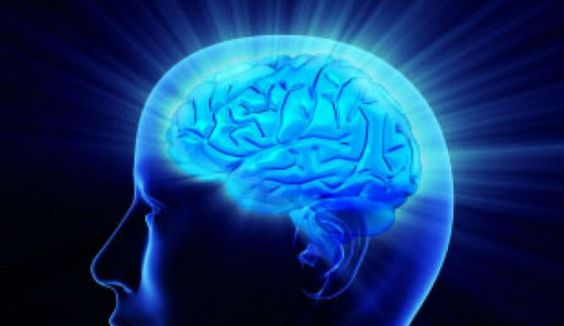 Newly Discovered Blood Vessels Beneath Skull Link Brain And Immune System, Link To Alzheimer