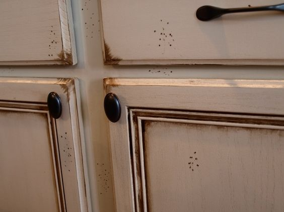 Stain over paint cabinets and kitchen cabinets on pinterest - Painting over stained kitchen cabinets ...