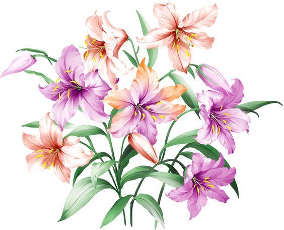 flower prints (цветочный принт):