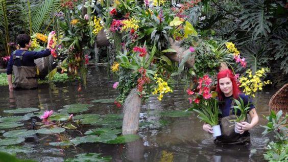 Los horticultores Ellie Biondi y Alex De Hoyle en Kew
