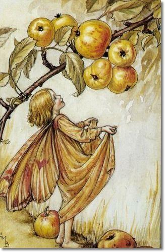 Cicely Mary Barker - Flower Fairies of the Autumn - The Crab-Apple Fairy:
