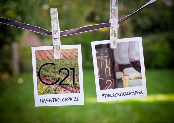 Tus brindis con los vinos de Bodegas Cepa 21 tienen su álbum en Facebook: #DELACEPAALAMESA https://www.facebook.com/media/set/?set=a.390140911041982.87941.286539831402091=3