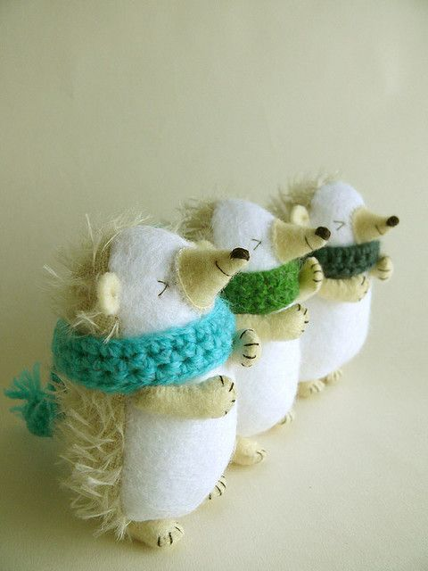 hedgehog choir