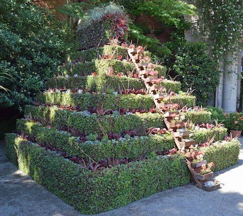 A construção de uma pirâmide Succulent com Ross Paisagem Construção - Succulent…