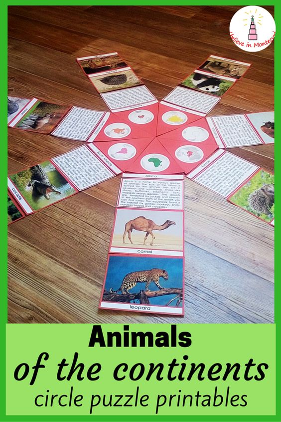 Animals of the continents Montessori-inspired circle puzzle printables