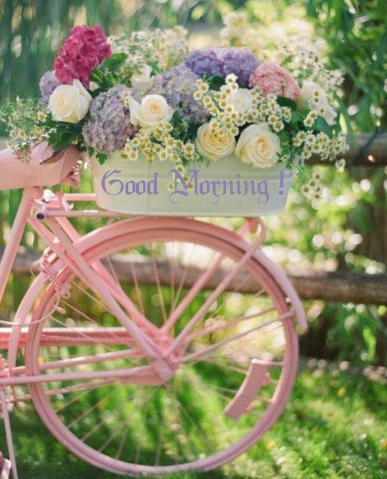 Good morning, and have great enjoyable day!!!...<img src=