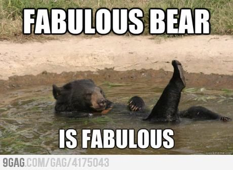 French bear hirl