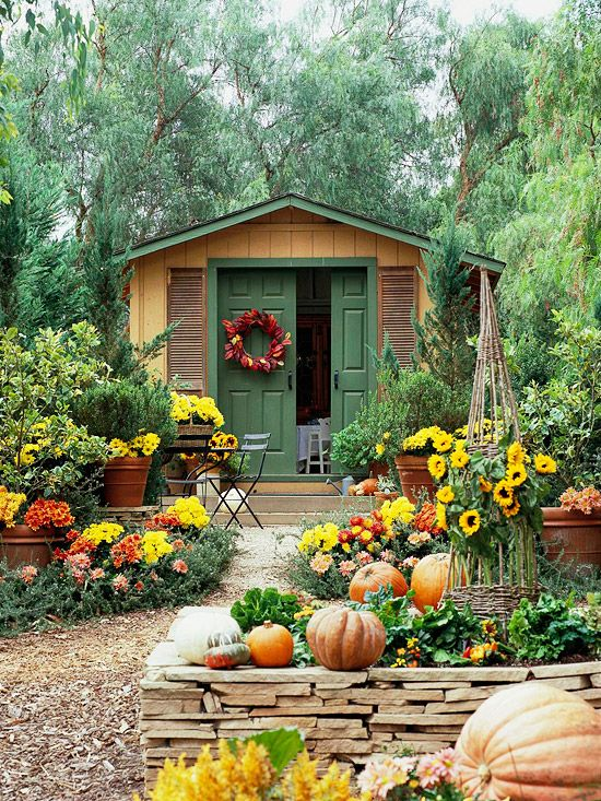 Fall Strokes  Fall's festive pumpkins and gourds supply a welcome accent to this animated combination of flowers, mums, and celosia. These reliable seasonal additions to the garden provide just-right bursts of yellow and orange near the growing season's end:
