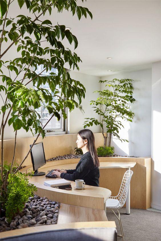 офис в стиле эко
