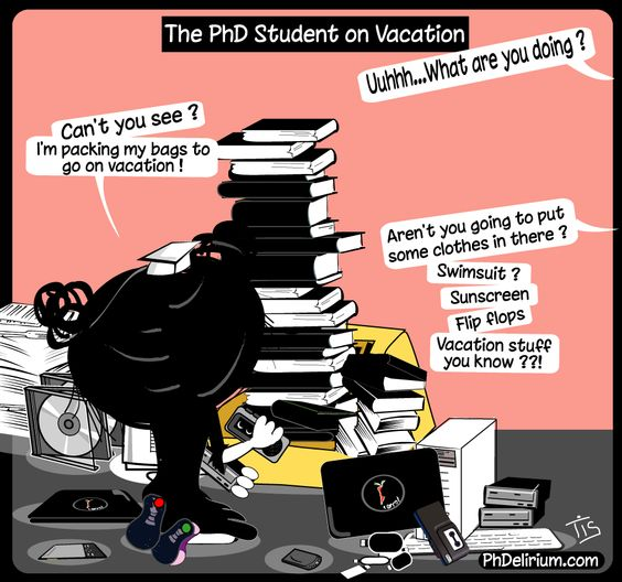 PhD cartoon from Phdelirium/ The PhD student on vacation !