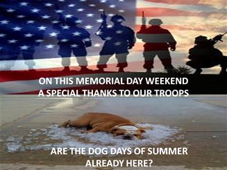 Have Great Memorial Weekend Y'all - From www.monsoondeals.com