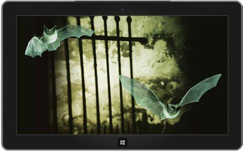 Unheimliches Tor, raue Mauer und zwei Fledermäuse im Flug
