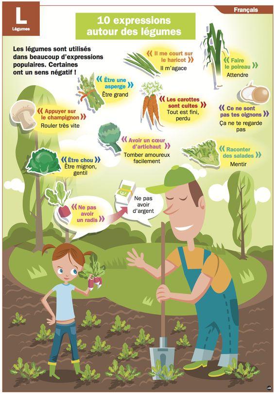10 expressions autour des légumes: