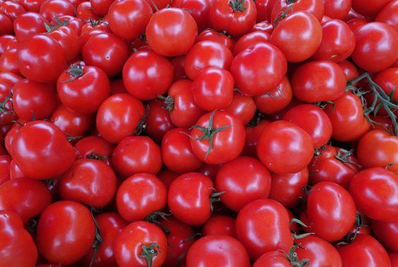 tiefrote reife Tomaten