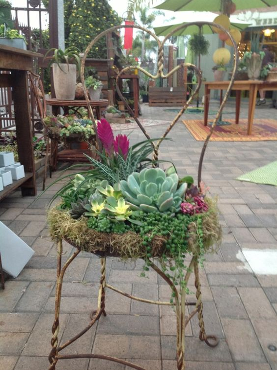 Created by Chicweedgirls: We found this great heart shaped chair and planted it up with some gorgeous succulents and tillandsia�s. We have done several custom ones that clients have provided their...