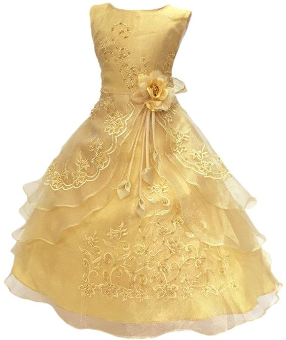 Amazon.com: Little/Big Girls Embroidered Beaded Flower Girl Birthday Party Dress with Petticoat: Clothing
