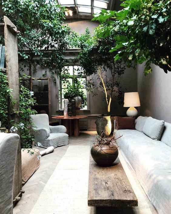 Indoor trees for a rustic living room #gardenIdeas #garden #gardening #plants #homeDecor #indoor