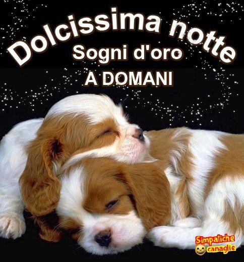 Dolcissima Notte Buonanotte Auguri Di Buona Notte Buona