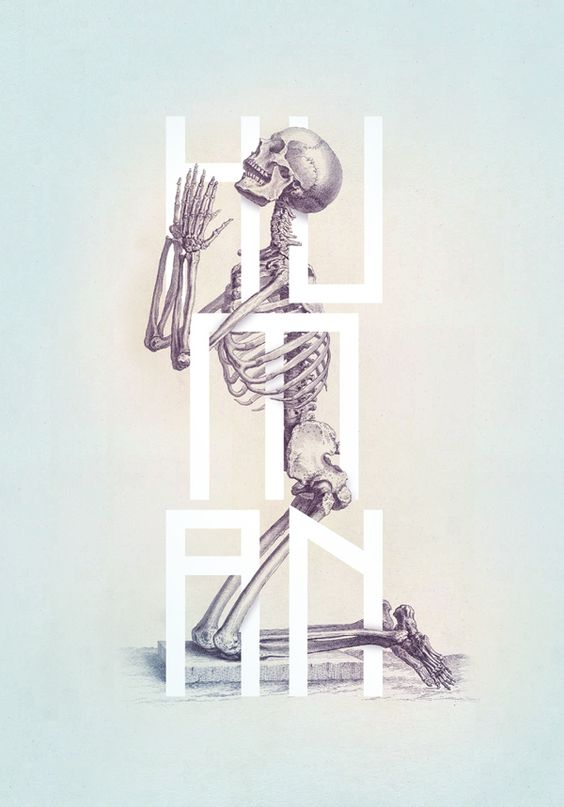 "Hauntingly beautiful prints by Josip Kelava. From the book ""Bone - Anatomy Illustrated""."