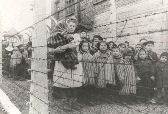L'ostetrica che ad Auschwitz salvò tremila bambini dalla morte