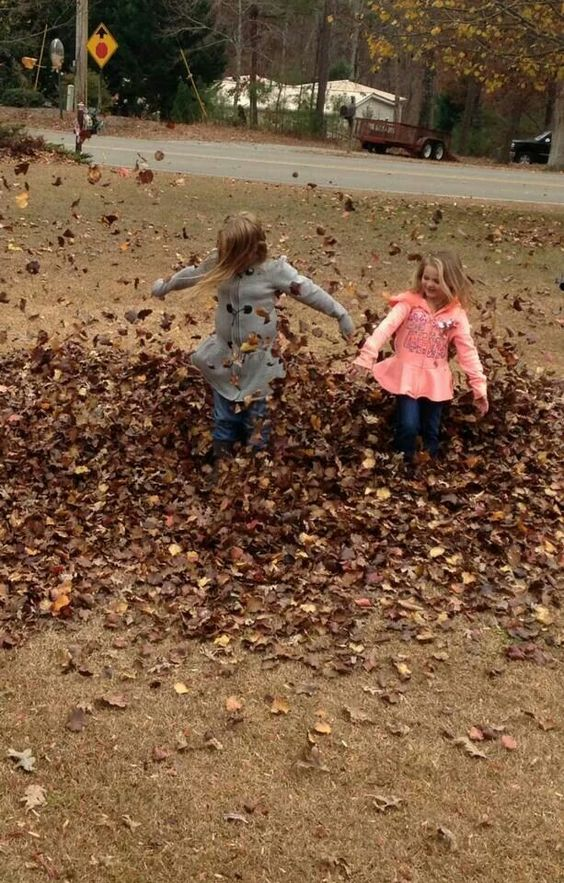 Bella and Addy Marsack having fun playing in the Leaves,  oh what fun