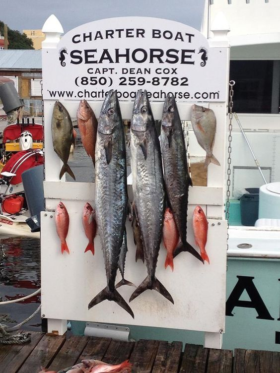 Rent a charter boat and go deep sea fishing. Destin is known as the World's Luckiest Fishing village. Try your luck! Don't forget your sunnies!  #TimeToSee