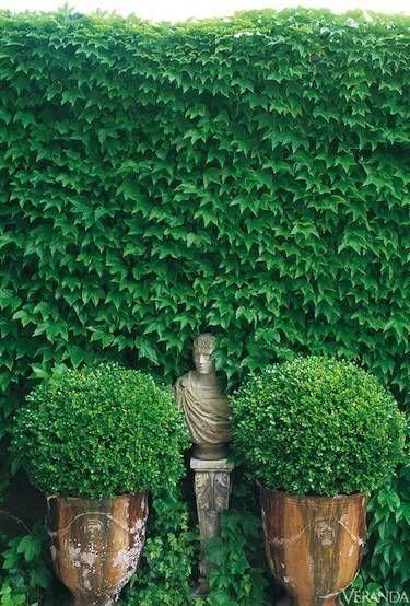 (カマルグでジャン=ルーDirand経由|庭園| Pinterest)
