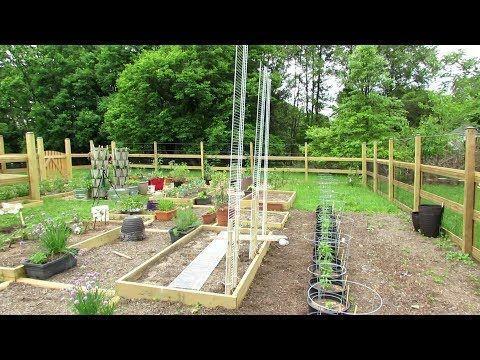 Vegetable Garden Trellis, 8 Foot Garden Trellis