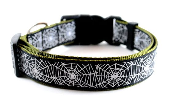 Spider Webs Dog Collar  LIMITED EDITION by DanesAndDivas on Etsy, $18.95