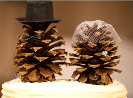 I LOVE these pine cone bride and groom cake toppers. They are environmentally friendly, seasonal for the Fall and Winter, and so creative! Hipster chic and Rustic!
