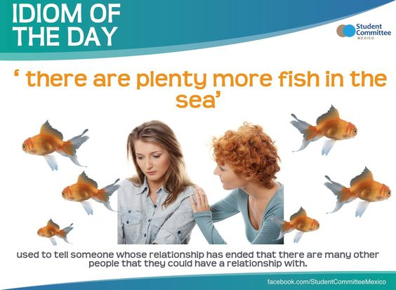 Pinterest the world s catalog of ideas for There are plenty of fish in the sea