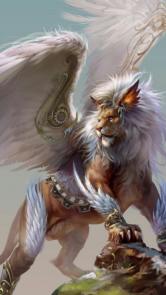 ae26d4e931de2dee2b7f7e90c4c627ec via Angel-Wings