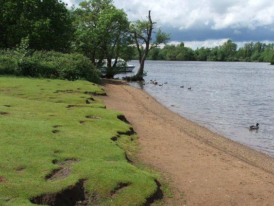 Salhouse Broad Favorite Places Norfolk Broads Sightseeing
