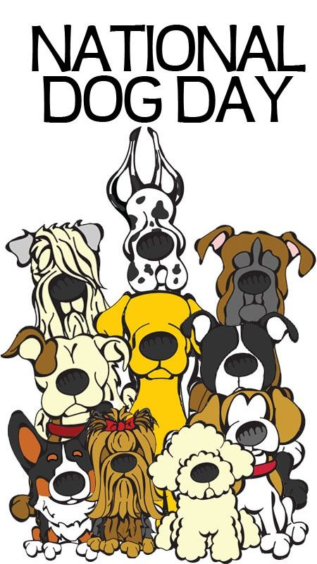 Happy National Dog Day August 26th Annually! Check out Promo Pet Products from The Executive Advertising for your pet business!
