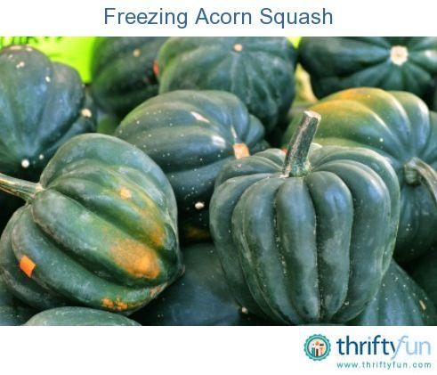 how to freeze acorn squash