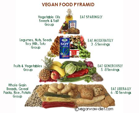 the diet of a dietary vegan Research also has shown that a vegan or vegetarian diet may lower your risk of getting type 2 diabetes office of dietary supplements.