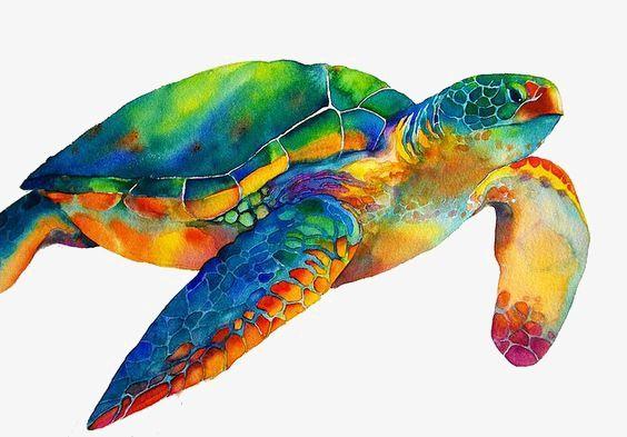 Blue Green Sea Turtle Turtle Painting Sea Turtle Art Turtle Watercolor
