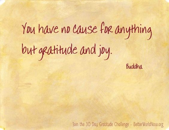 Gratitude and Joy...